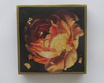Beautiful Peach Rose Wall Art, Dutch Rose Painting, Small Wall Art, Rose Wall Decor