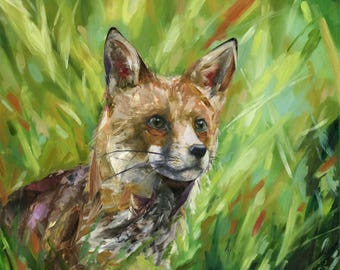 Inquisitive Red Fox - Art Print