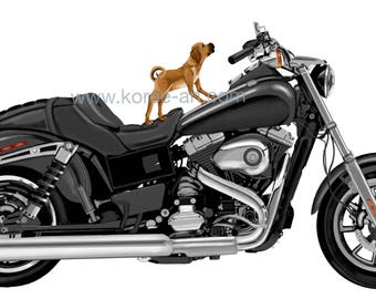 Howling wild ride, dog on a cycle, puggle puppy and his Harley