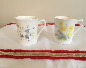 2 Royal Devon Bone China mug