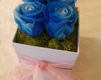 Bi color Immortal Roses in Blue. Preserved Roses. Eternity Flowers. Long lasting ROSES