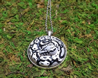 Black and white Ball Python medallion- made to order