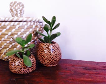 set of 2 ceramic plant pots