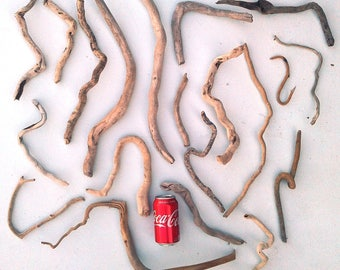 Curved and Twisted Driftwood, 20 Pieces