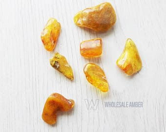 Wholesale amber stones 7 pieces. Baltic amber stones. Yellow amber color, polished beads. Gem stones. SM104