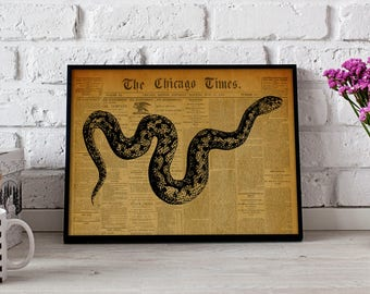 Snake Reptile Vintage poster, Snake Reptile wall art, Snake Reptile Vintage wall decor, Snake Reptile print, Gift poster