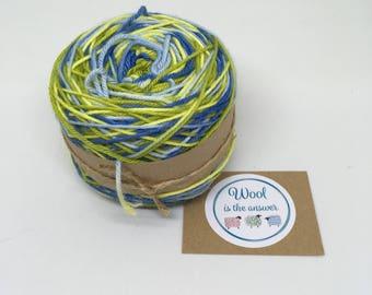 Hand Dyed DK Superwash Merino Bluebell Meadow