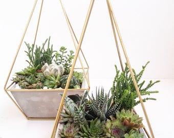 Modern Geometric Planter| Concrete Planter| Gold |Himelli| Hanging Planter