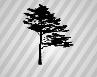 pine tree Silhouette - Svg Dxf Eps Silhouette Rld RDWorks Pdf Png AI Files Digital Cut Vector File Svg File Cricut Laser Cut