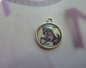 1 cabochon resin 20mm silver metal round Capricorn zodiac sign