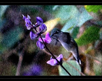 Hummingbird and Hyacinth Flowers - Wall Art, Purple and Pink Art, Bright Airy, Kitchen Artwork, Hummer, Bird Nature Scenery, Pastel Wall Art
