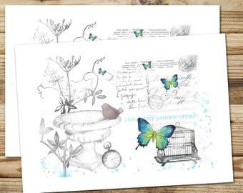 """2 tarjetas postales francesas la creación, ilustración original """"del jardín y la mariposa"""" realizado en la Provenza, papel FSC"""