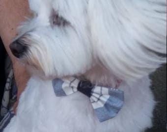 Lucy: Bow tie for dog