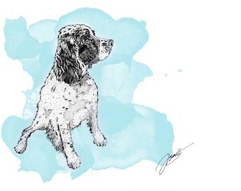 A4 Artist illustration print of a Springer Spaniel - A4 artwork SiddyPrint - 'Spirit of the Springer' print - Toned