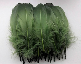 set of 5 feathers Green 15-20cm