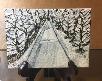 Mini Snowy Path