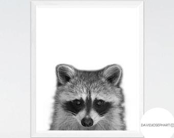 Raccoon Print, Woodlands Nursery, Forest Print, Nursery Wall Art, Animal Photo, Black and White, Digital Download, Raccoon Poster