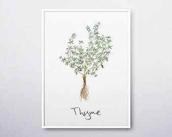 Thyme Printable, Thyme Plant, Thyme Print, Thyme Wall Art, Thyme Herb, Thyme Watercolor, Herb,Herb Garden,Kitchen Wall Art, INSTANT DOWNLOAD
