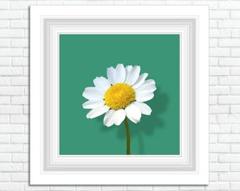 "Art Print Instant Download 12""x12"" Files"