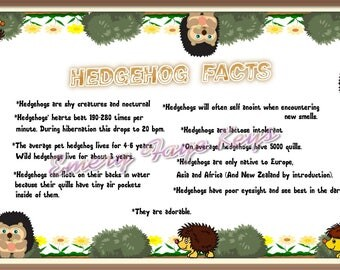 Hedgehog facts printable art