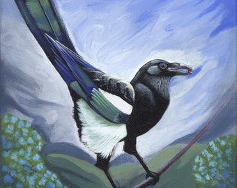 """Cheeky Magpie - PRINT, 8""""x10"""", giclee, by Megan Ann Sterritt."""