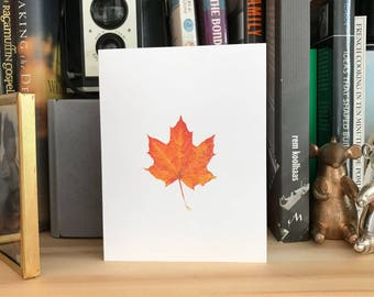 CLEARANCE: (Set of 5) orange res maple autumn leaf card, blank inside with white envelope
