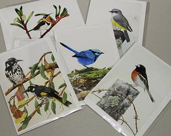 Pack of 5 Greeting Cards featuring Small Bush Birds