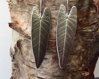 Philodendron Leaf Earrings