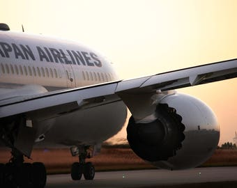 Photo 787 Japan Airlines Nightfall
