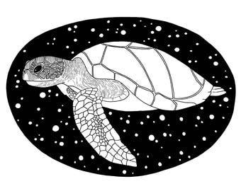 Turtle - Digital Print