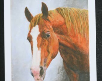 """Horse Head Giclee (entitled """"Bella"""") by Cindy Sutter, Signed and Numbered Limited Edition Prints on Acid Free Paper"""