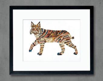 Animals of North America: Bobcat Art Print