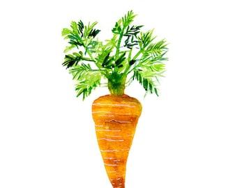 Plant - Carrot - Art Print