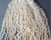 Wensleydale - Long Locks for Spinning, Felting, Weaving and other Projects - 1 oz