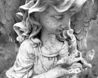 Angel holding birds on her hands statue free use