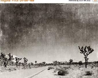 SALE black & white photography, Palm Springs, Joshua Tree, desert, travel landscape, national park, 8x10 5x7 print