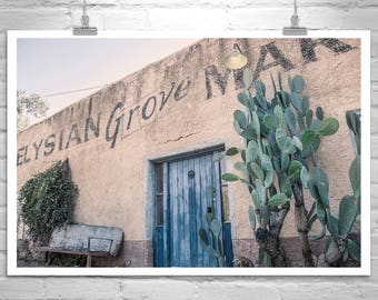 Tucson Picture, Blue Door, Cactus Art, Old Tucson, Barrio Viejo, Old Pueblo, Giclee Canvas Art, Architecture Art, Wall Art, Home Decor