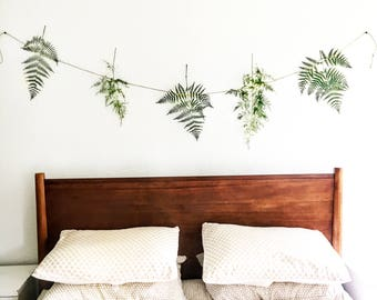 forest fern botanical banner