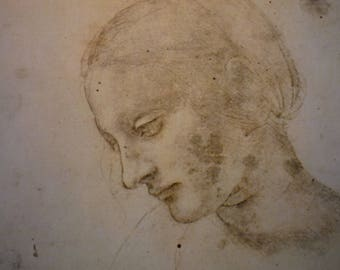 Da Vinci - Study for The Head of Madonna - Fine Art Print - Italian Renaissance Framable  for art lovers
