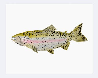 Watercolor Rainbow Trout - Art Print  - 8 x 10
