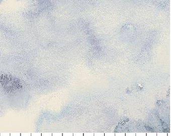 Northcott - Ambrosia - Twilight - Medium Tonal - Grey Fabric by yard or select cut  21254-93