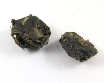 2 Owl Pellets to Dissect , Rodent Fur, Skull Bits, Bones Creepy Specimen, Bird of Prey Regurgit Mouse Rat Gopher