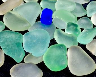A-Sea Glass, Beach Glass of Hawaii beaches SEAFOAM! COBALT! GENUINE Sea Glass! Sea Glass Bulk! Bulk Sea Glass! Seaglass!