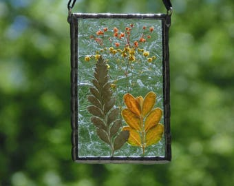 Pressed flower suncatcher, pressed ferns, real dried flowers terrarium, stained glass suncatcher, Babys breathe leaves, nature inspired