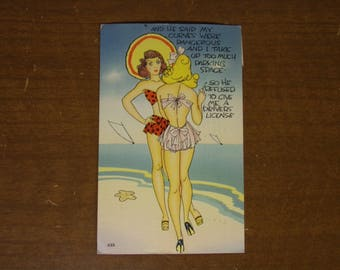 "Vintage 1940's   ""American Beauty Series""   Linen Postcard   Used"