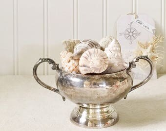 Sugar Bowl-Silver Plate Sugar Bowl