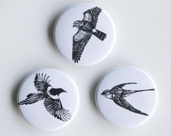 "Swallow, Magpie, Falcon Pins - In Flight Pin-Back Buttons - Set of 3 Pin-Back Buttons - 1.5"" - Woodland pin Animal pin Pingame Badges Birds"