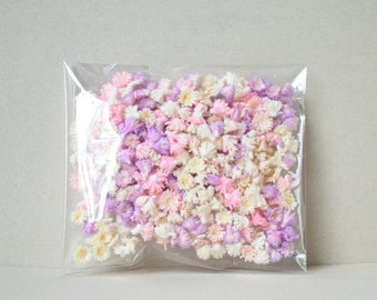 A Pack  Of Dried  Flower /  Botanical  Dried Flowers
