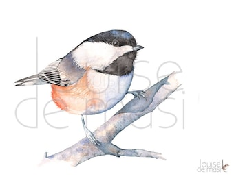 Chickadee print of watercolor painting, C20717, 5 by 7 size print, Chickadee watercolor print, Chickadee watercolor painting,Louise De Masi©