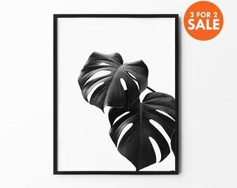 Monstera Print, Tropical Leaf Art, Natural Wall Arts, Nature Poster, Black and White, Inspirational, Monstera Wall Decor,